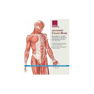 ANATOMY CHART BOOK