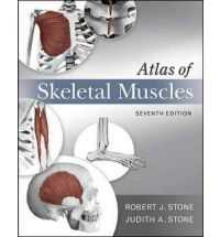 ATLAS OF SKELETAL MUSCLES e7